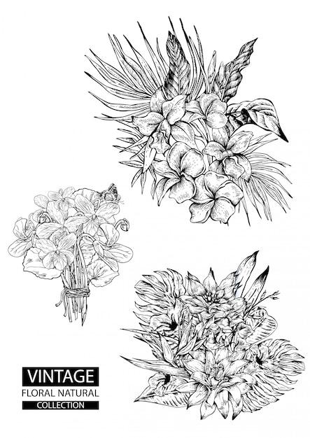 ビンテージコレクションを着色花の概要 Premiumベクター
