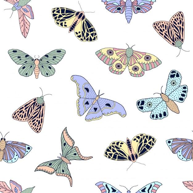 Бабочки и мотыльки Premium векторы