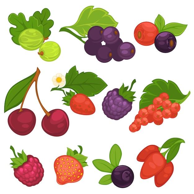 Ягоды фрукты вектор изолированные плоские иконки для варенья или сока Premium векторы