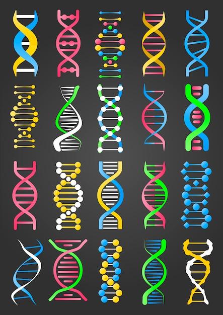 Коллекция знаков днк молекулы на черном Premium векторы