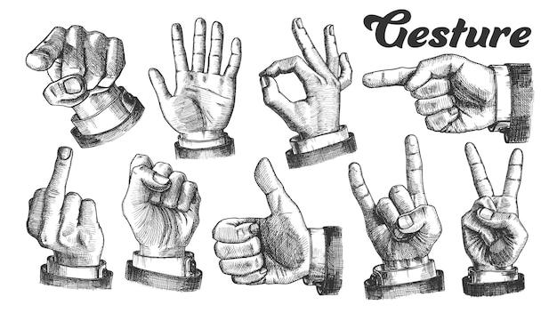 複数の男性の白人手ジェスチャーセット。 Premiumベクター