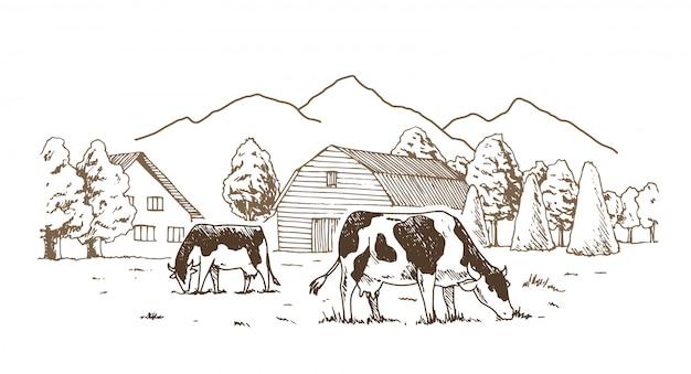 Коровы пасутся на лугу. Premium векторы