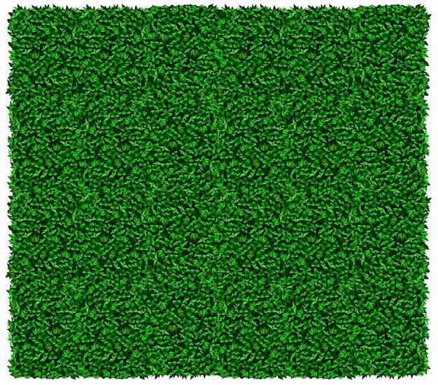 緑のブドウまたはツタの壁のテクスチャ Premiumベクター
