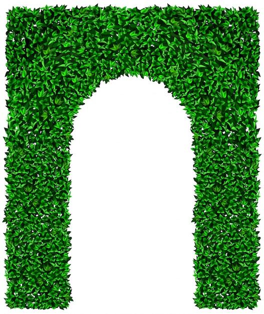 緑のツタのブドウのアーチのテクスチャ Premiumベクター