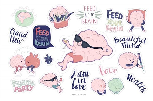 脳ステッカーフィードとレジャーセット Premiumベクター