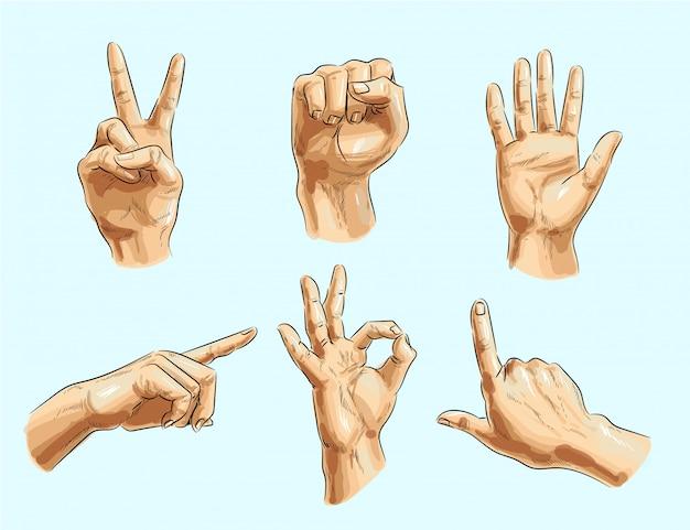 Вектор мужской жест рукой установлен Premium векторы