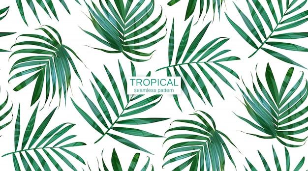 Вектор пальмовых листьев листья бесшовные модели. Premium векторы