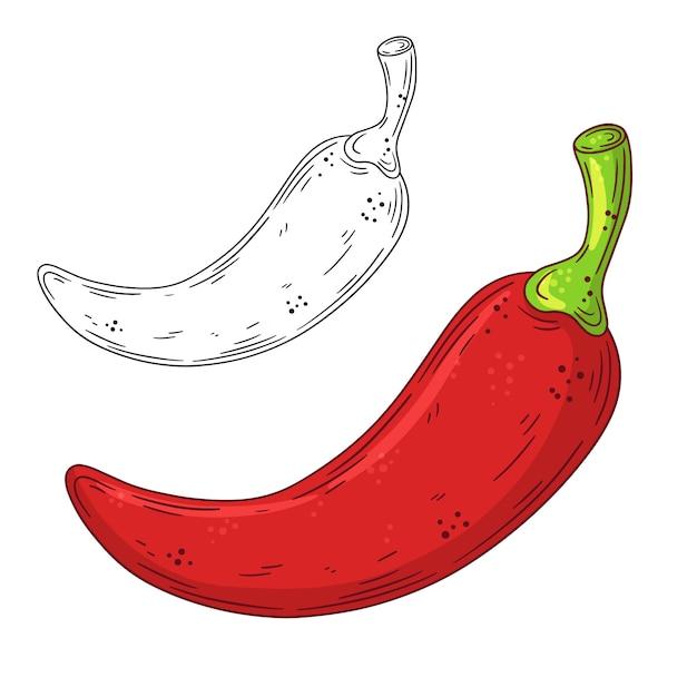 Рисованной каракули красный перец. Premium векторы