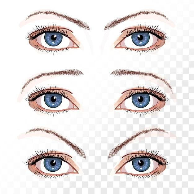 Вектор женские глаза на белом рисованной иллюстрации Premium векторы