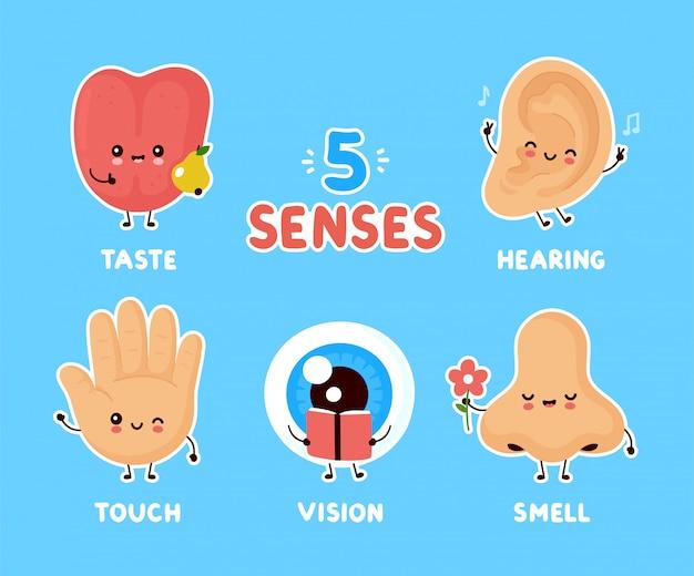 かわいい幸せな五感のポスター Premiumベクター