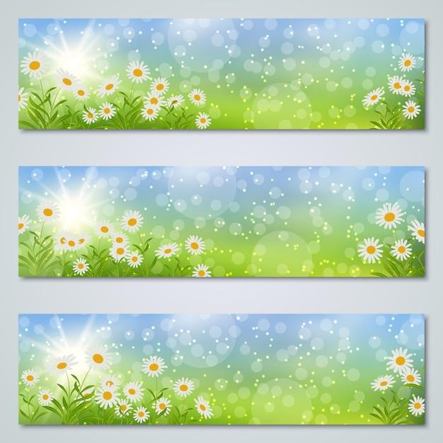 Коллекция шаблонов баннеров весны и лета Premium векторы