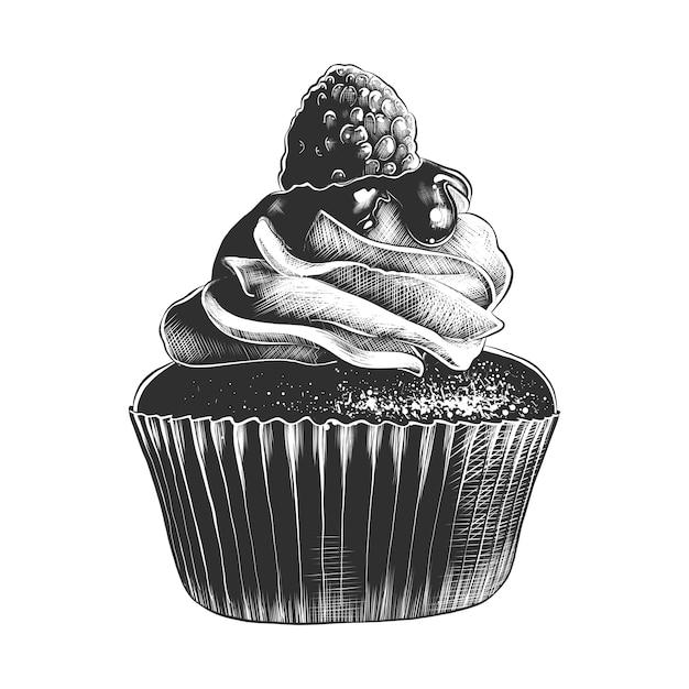 モノクロのカップケーキの手描きのスケッチ Premiumベクター