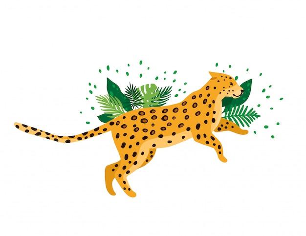 Леопард, изолированные на белом фоне Premium векторы