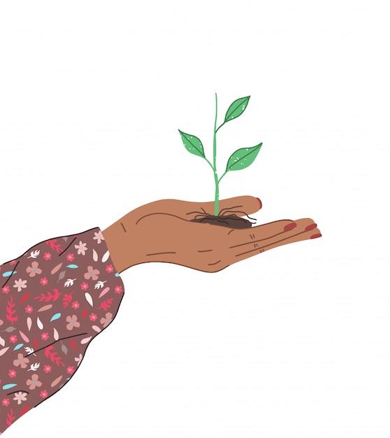 女性の手は、農業や植栽のための若い植物を保持しています Premiumベクター