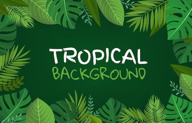 熱帯の背景 Premiumベクター