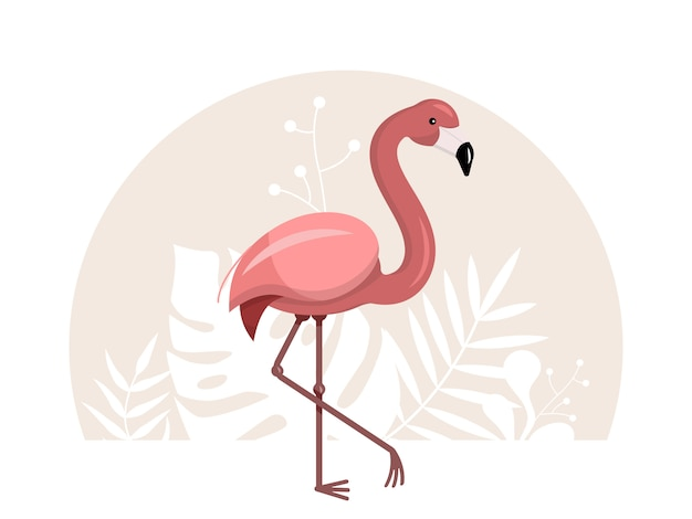 ピンクのフラミンゴのイラスト Premiumベクター