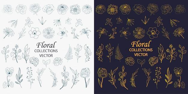 手描きの花の要素のコレクション Premiumベクター