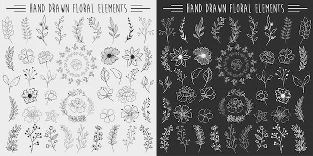 手描きの花の要素 Premiumベクター