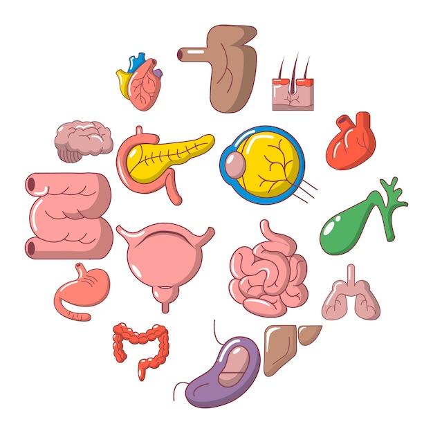 人間の内臓のアイコンセット、漫画のスタイル Premiumベクター