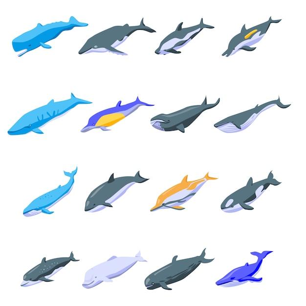 Набор иконок китов, изометрический стиль Premium векторы