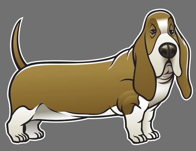 バセットハウンド犬 Premiumベクター