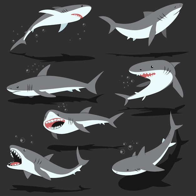 Набор символов мультфильм акул Premium векторы