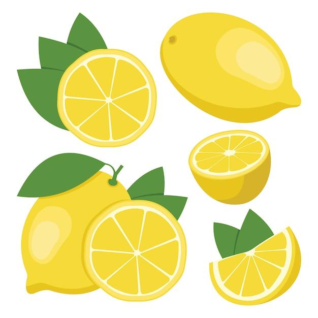 レモン。全体とスライスレモンフルーツのコレクション Premiumベクター