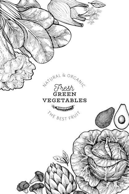 Зеленые овощи постер Premium векторы