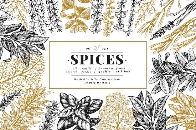 料理用のハーブやスパイスの背景。手描きのレトロな植物図。 Premiumベクター