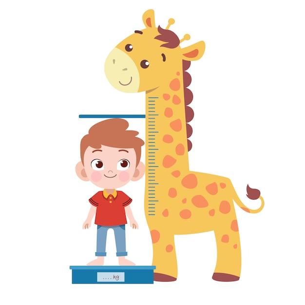 子供測定高さベクトルイラスト絶縁 Premiumベクター