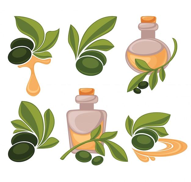 Бутылка зеленой оливки и масла, Premium векторы