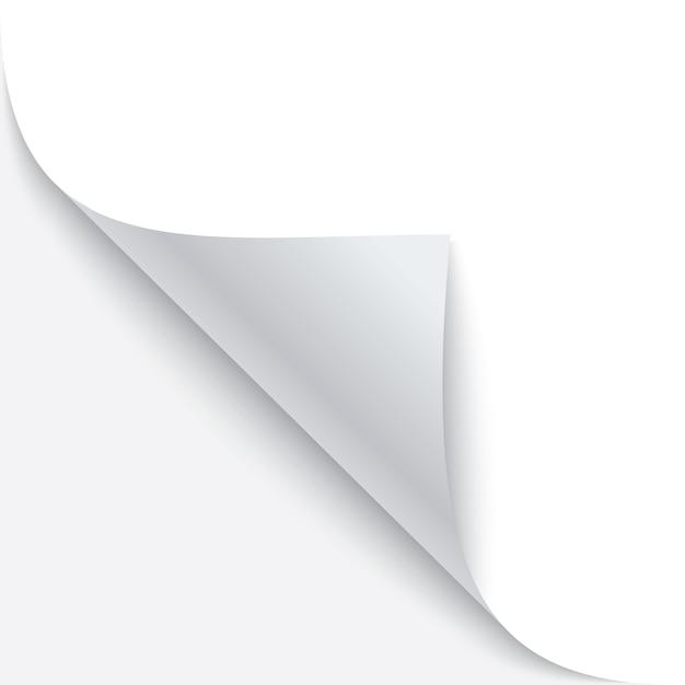 影で紙の丸まった角 Premiumベクター