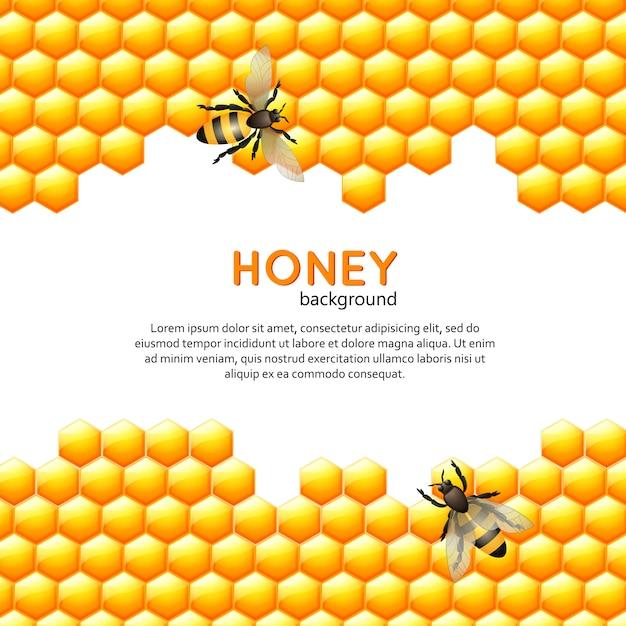 Мед пчелы фон Бесплатные векторы