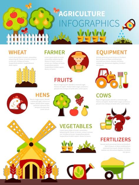 農業農場のインフォグラフィックポスター 無料ベクター