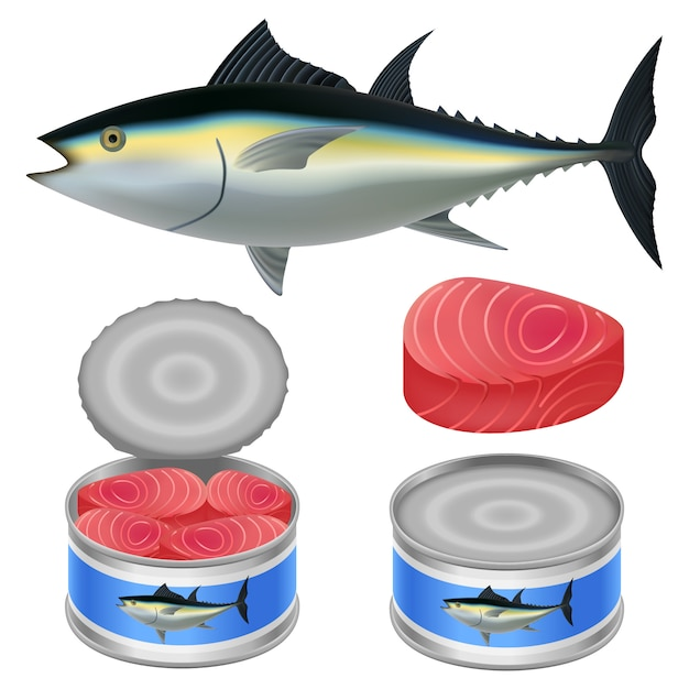 Набор макетов из тунца со стейком Premium векторы