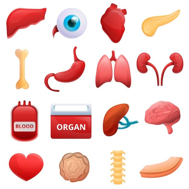 臓器セット、漫画のスタイルを寄付 Premiumベクター