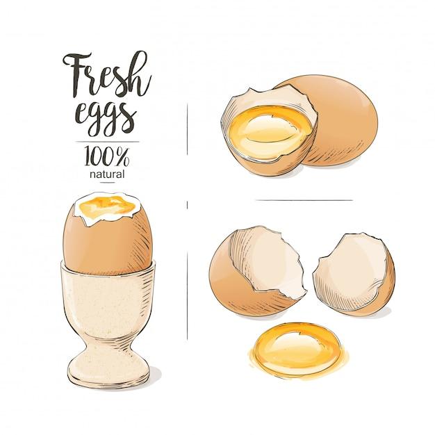 ひびの入った卵 Premiumベクター