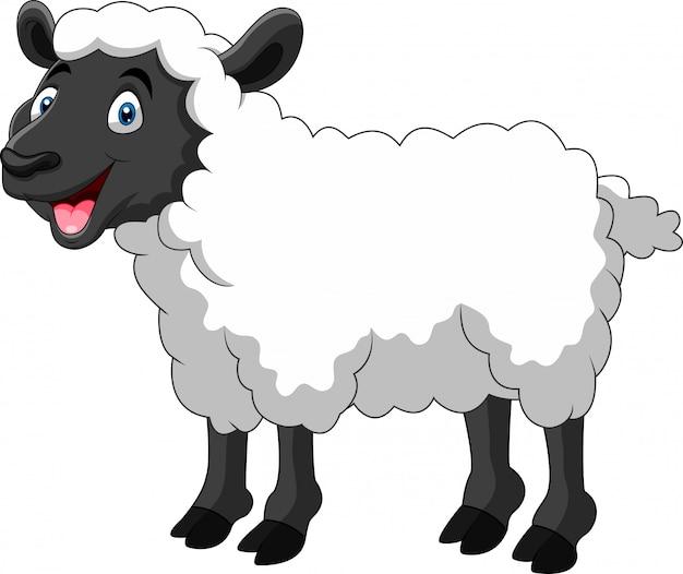 Милый мультфильм овец улыбка Premium векторы