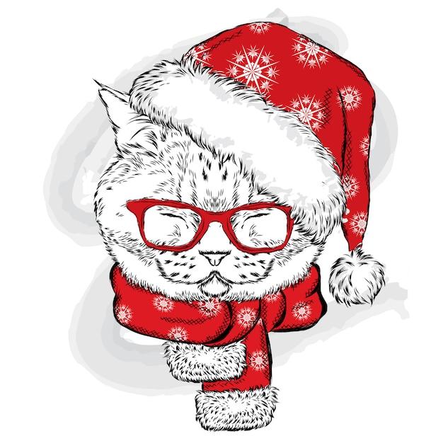 ニット帽とスカーフをしたおかしい猫。はがきやポスターのイラスト、服の印刷。正月とクリスマス、冬。かわいい子猫。 Premiumベクター