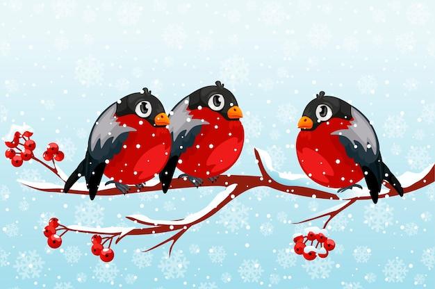 Группа мультяшных снегири на ветке рябины. красные птицы на ветке зимой со снегом. Premium векторы