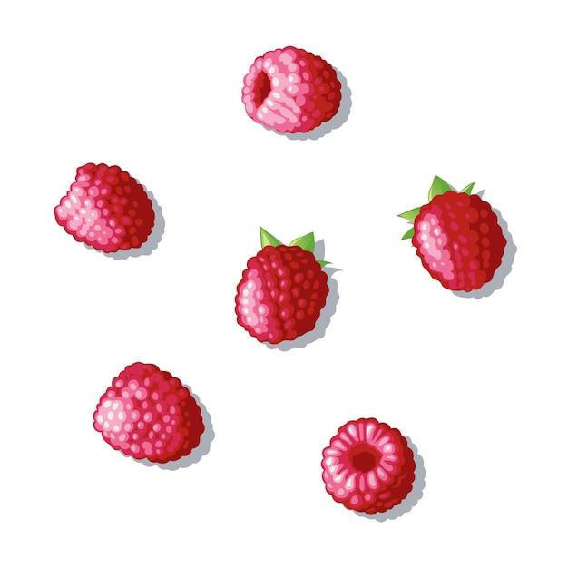 Набор малины. по поверхности рассыпалась ягода. малина под разными углами. иллюстрация Premium векторы