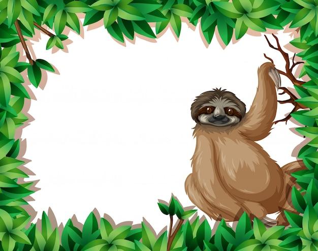 Рамка ленивца в природе Бесплатные векторы