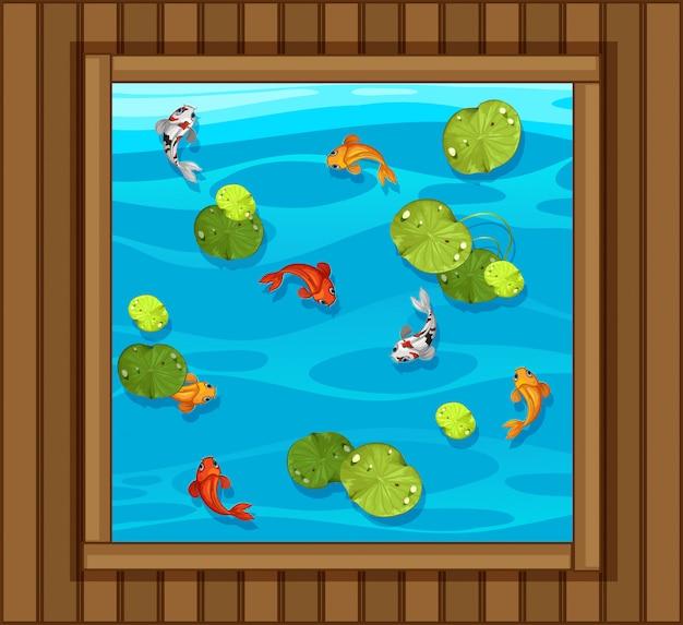 물고기 연못의 평면도 프리미엄 벡터
