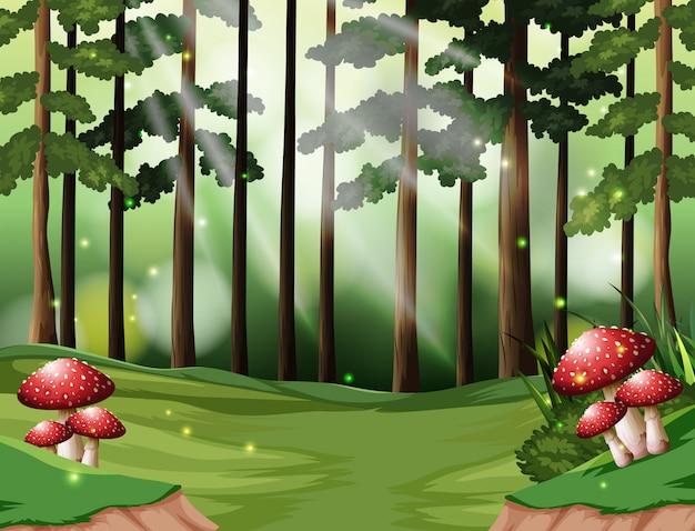 Фон тропического леса Premium векторы