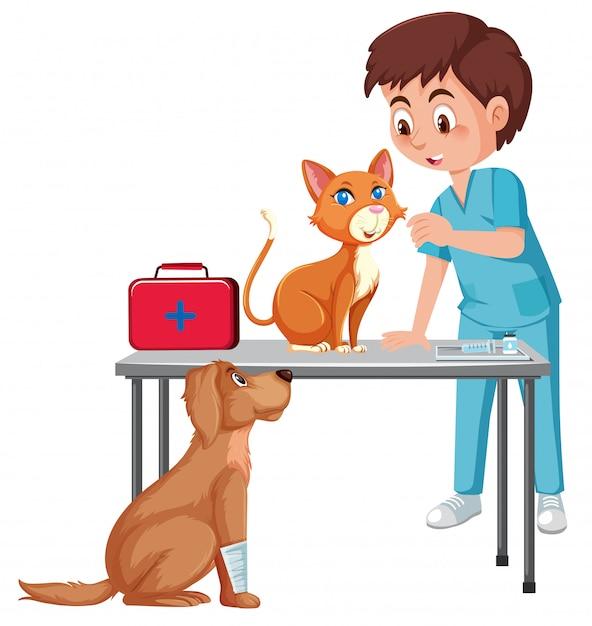 ペットを世話する獣医 Premiumベクター