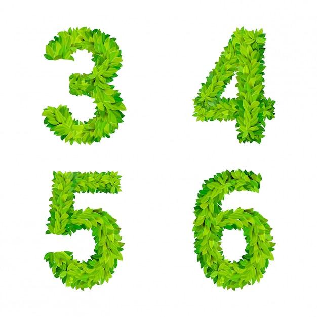 L'erba di abc lascia il cartello moderno della natura degli elementi di numero della lettera che segna l'insieme deciduo fogliare frondoso. 3 4 5 6 lettere naturali fogliate foliate a foglia latina collezione di caratteri dell'alfabeto inglese latino. Vettore gratuito