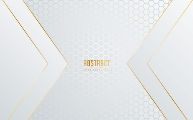 Abstract background white and grey color with line golden color. Premium Vector