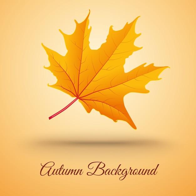 Sfondo astratto con foglia d'autunno Vettore gratuito