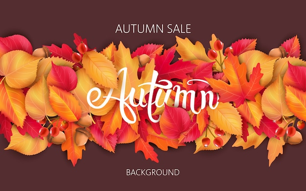 葉、どんぐり、ベリーと抽象的な背景。秋のセール Premiumベクター