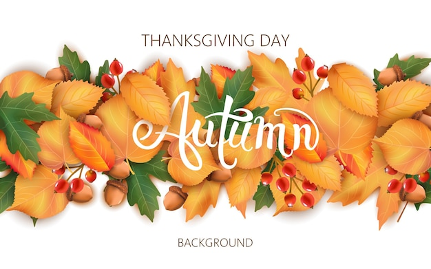 葉、どんぐり、ベリーと抽象的な背景。秋のテーマ。感謝祭の日 Premiumベクター